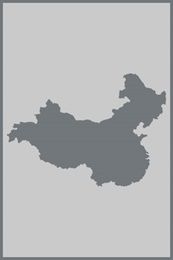 China Region Support